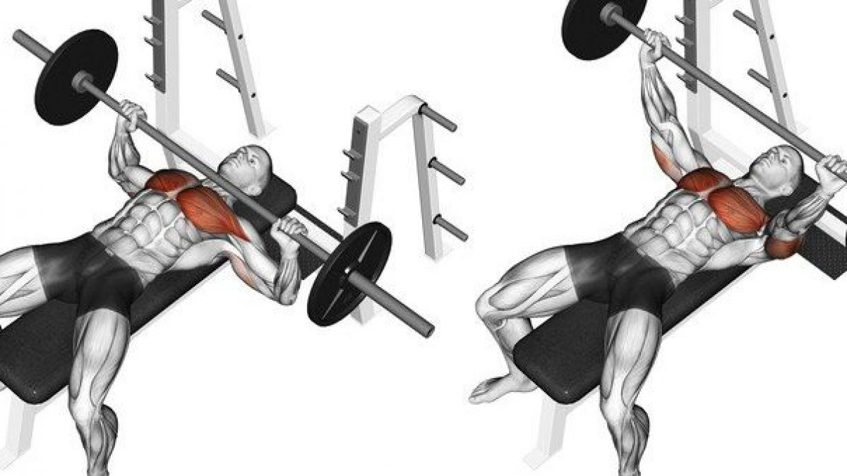 Chest routine perfect 8 Best