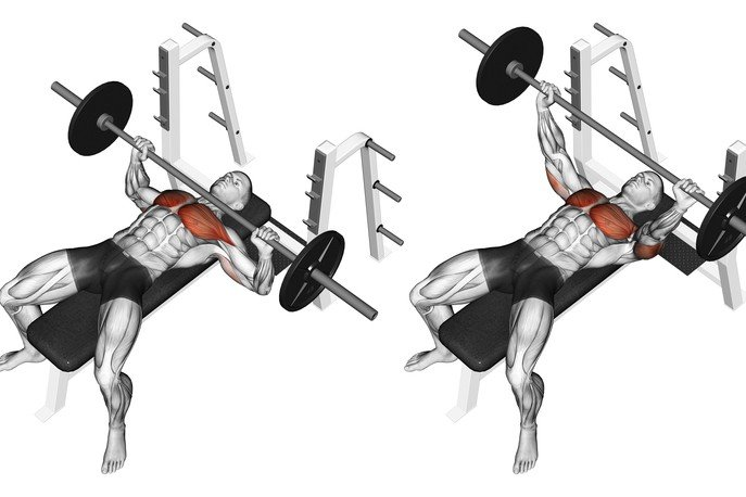Chest Bench Workout