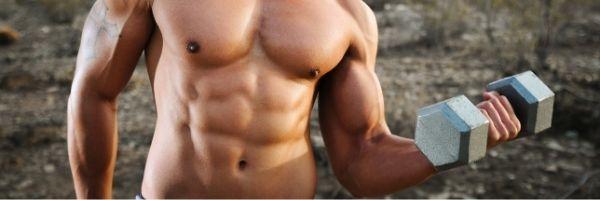 Building Lean Muscle Plan