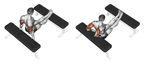 Tricep Bench Dips