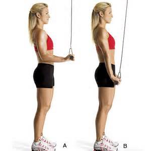 Tricep Workout to Build Lean, Muscular Arms