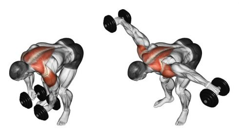Bent-over Dumbbell Side Raises