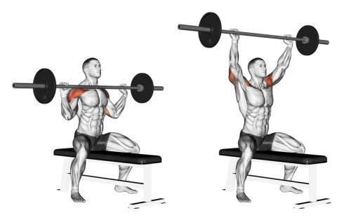 Military Press Shoulder Workout