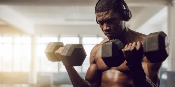 3 Day Split Workout Plan