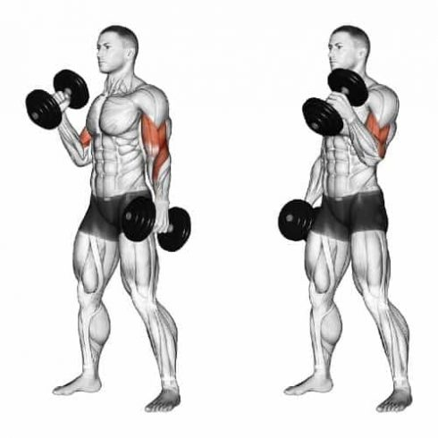 Arm Workout With Dumbbells at Home