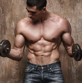 Lean Physique