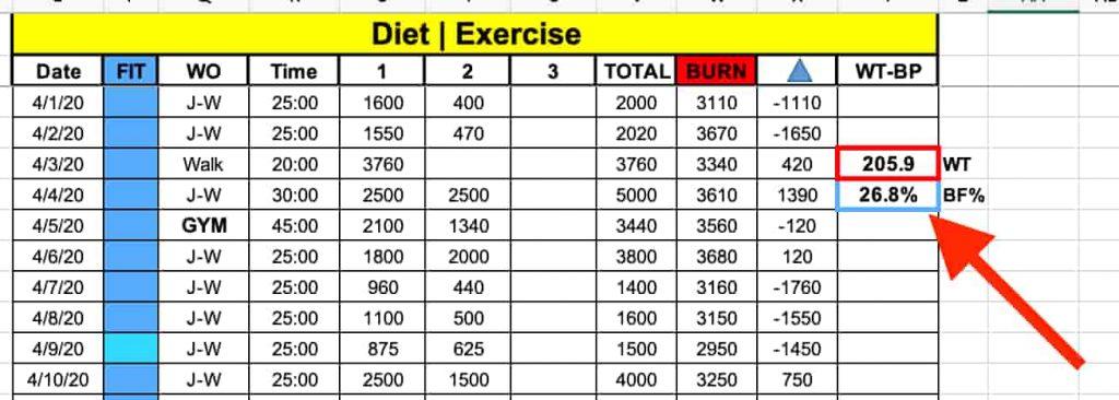 Fitness Tracking Spreadsheet