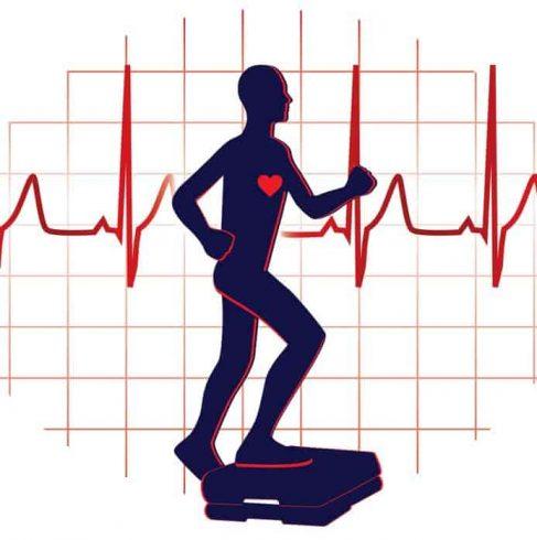 Heart Rate Training Zones Calculator