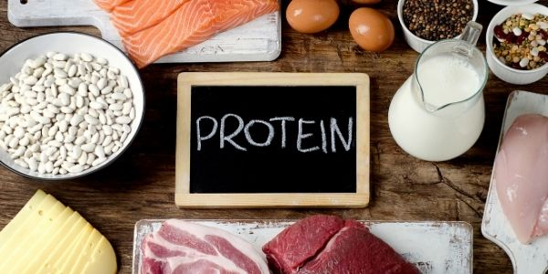 Lean Muscle Protein