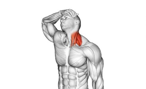 Assisted Lateral Neck Stretch