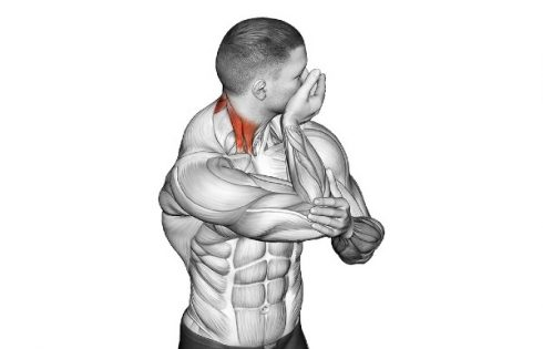 Assisted Neck Rotation Stretch