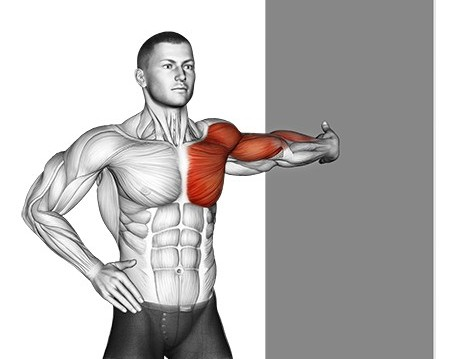 Chest Stretch Using Wall