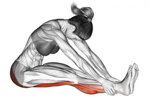 Hamstring Stretch Benefits