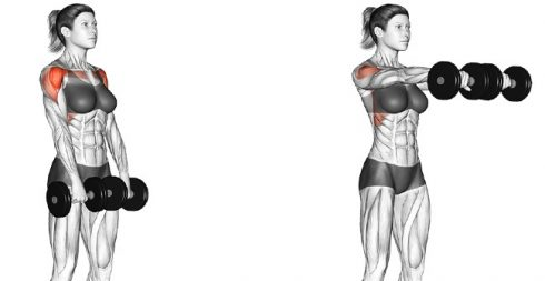 Shoulder Dumbbell Workout at Home