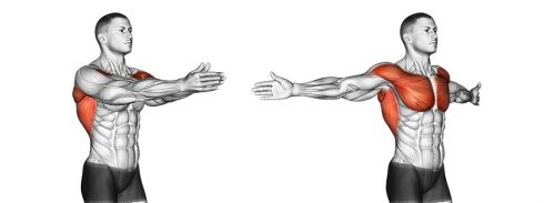 Double Arm Chest Stretch