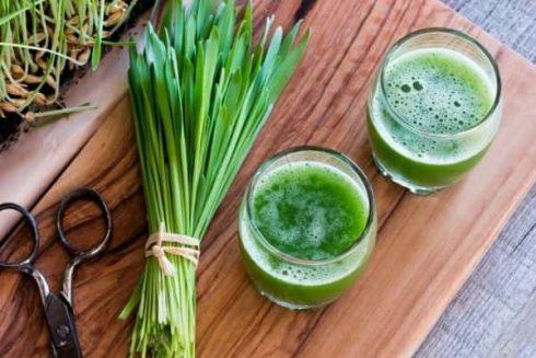 Wheatgrass Superfood