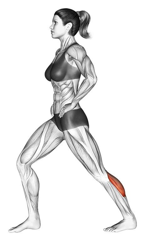 Best Calf Stretch for Flexibility
