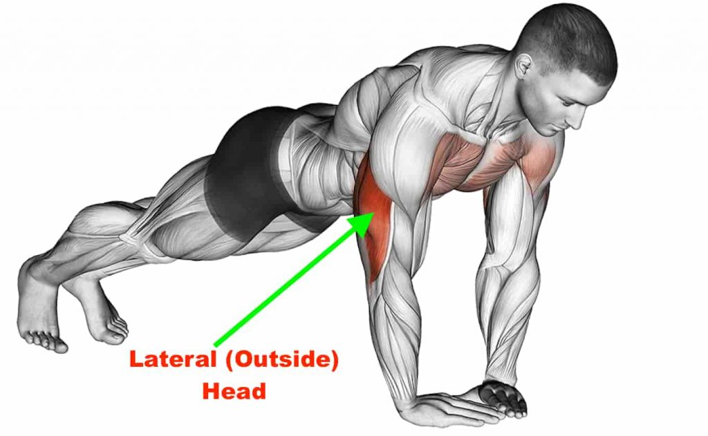 Muscles Worked Doing Diamond Push Ups