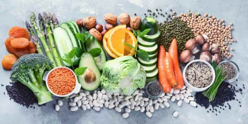 Plant Based Diet Rules
